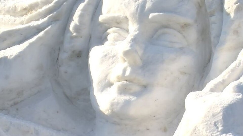 У центрі Луцька з'явився сніговий барельєф із портретом Лесі Українки