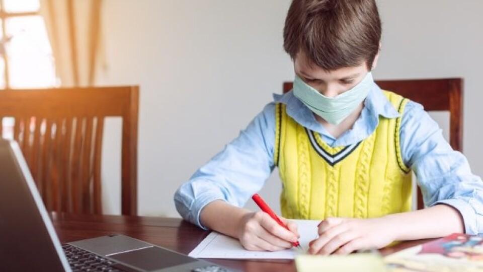 У Нововолинську на дистанційне навчання переходять 5 шкіл