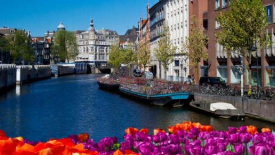 «Голландія» зникла із карти світу