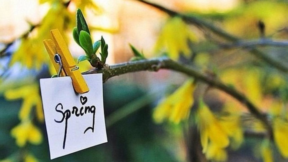 Хмарно, але тепло: якою буде погода у Луцьку 9 квітня
