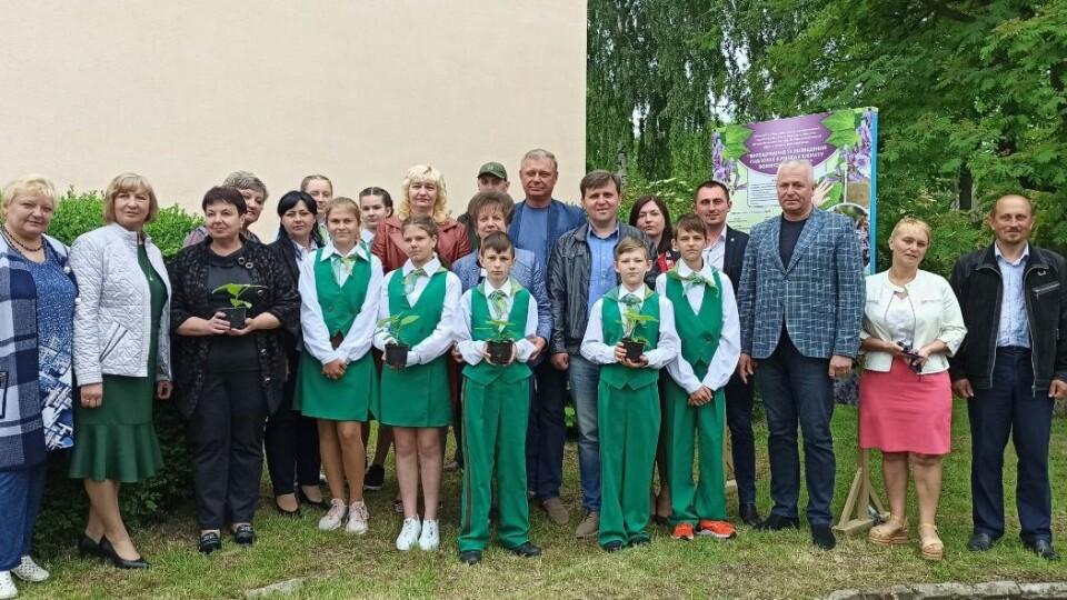 Поблизу Луцька на території ліцею висадили два десятка павловній