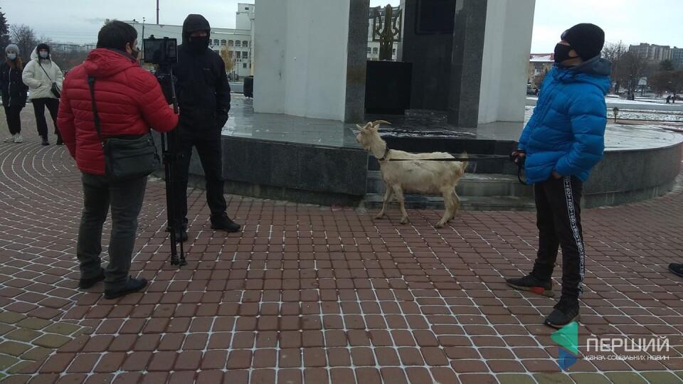 До Волинської ОДА привели козу. Кажуть, «це область, яку доять губернатори»