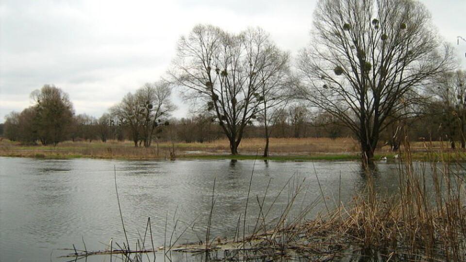 У річках на Волині підніметься рівень води. На Ратнівщині може затопити присадибні ділянки