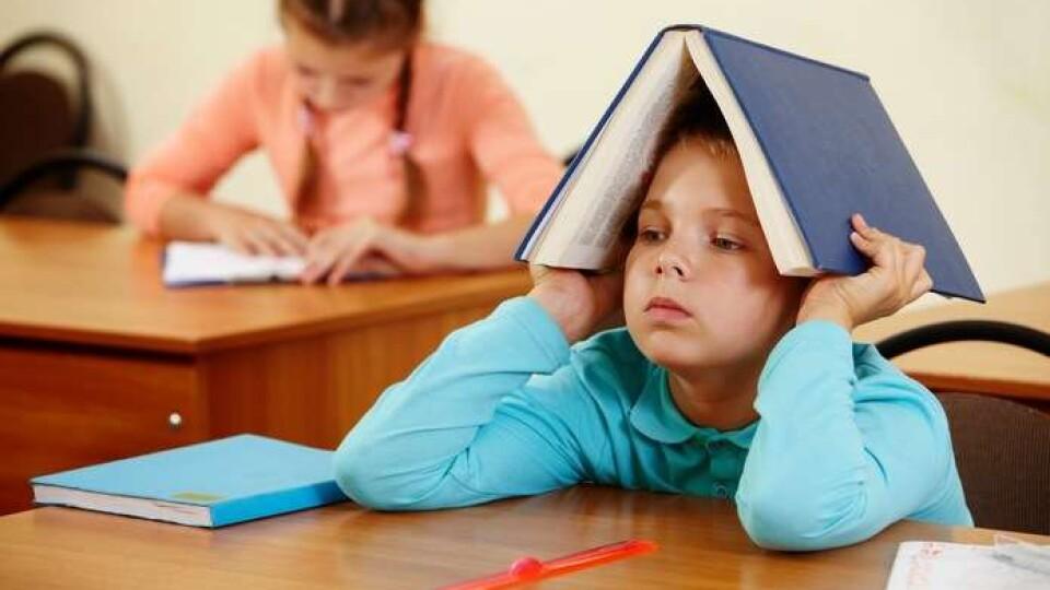 Чи розпочнеться навчання у школах 1 вересня? Що кажуть у Міністерстві оствіти