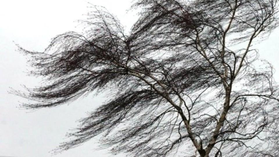 Для волинян оголосили штормове попередження
