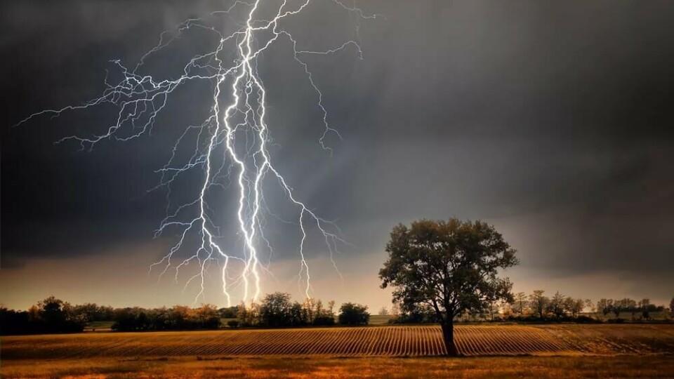 На Волині оголосили штормове попередження. Попереджають про грозу та сильний вітер