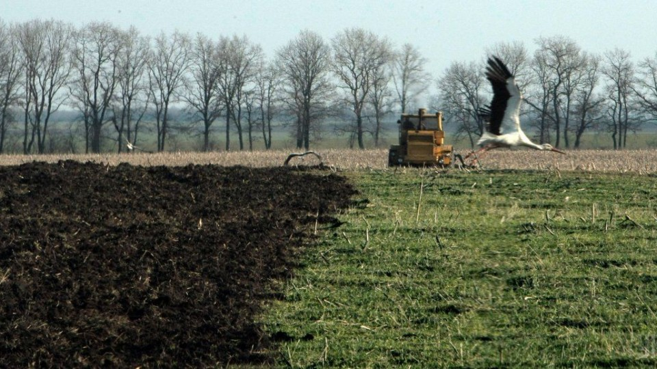 На Волині 40 гектарів землі повернули державі