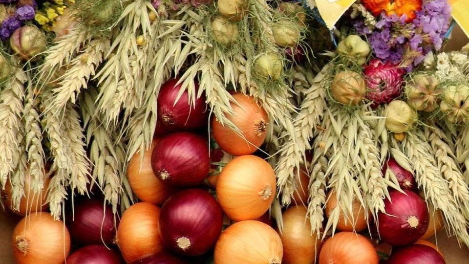 Чому корисно їсти цибулю: 8 причин