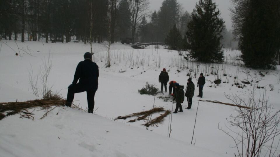 У центральному парку Луцька рятують рибу. ФОТО