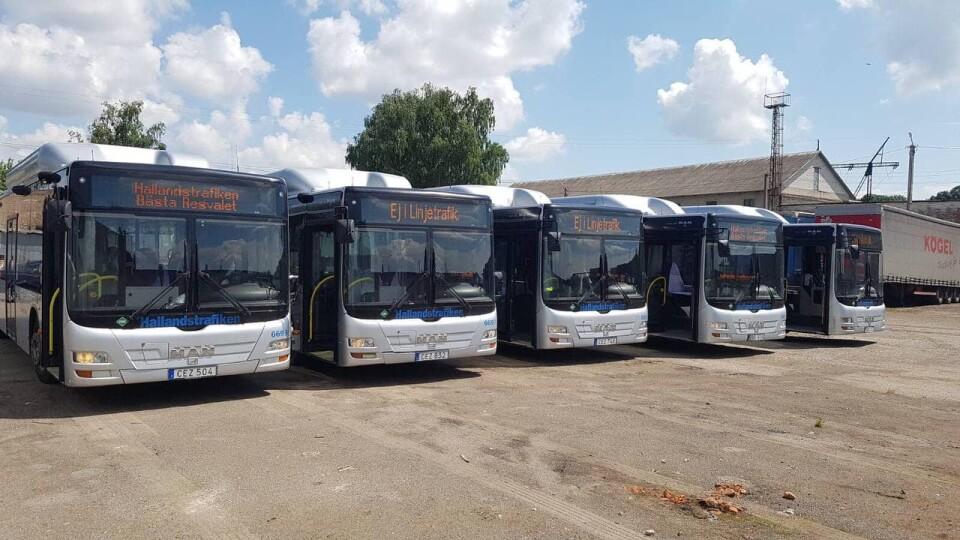 Вулицями Луцька почнуть курсувати ще 7 нових автобусів MAN