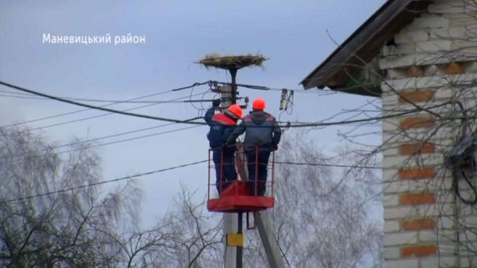 Волинські енергетики встановлюють безпечні лелечі гнізда. ВІДЕО