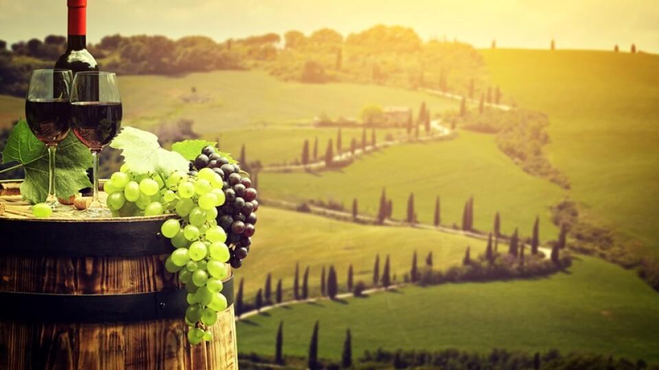 Для чого вино витримують у бочках. Розповідає ALCOMAG
