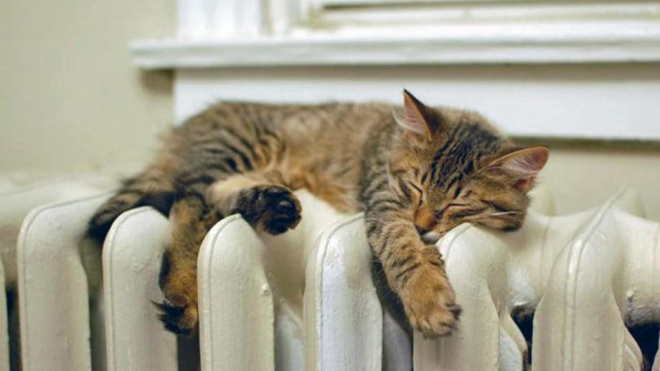 В квартирах – спека: лучани скаржаться на гарячі батареї