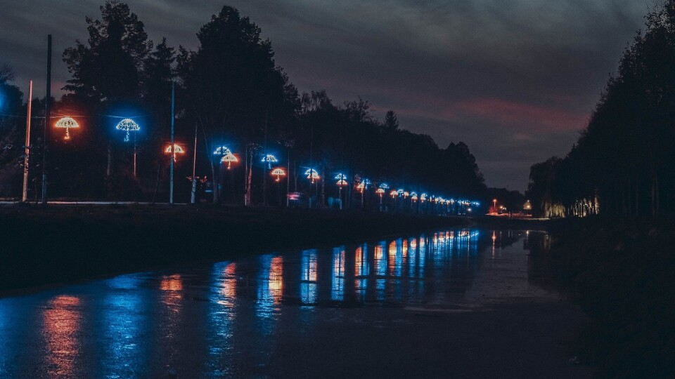 На відеокамери в Центральному парку Луцька просять 1,5 мільйона гривень