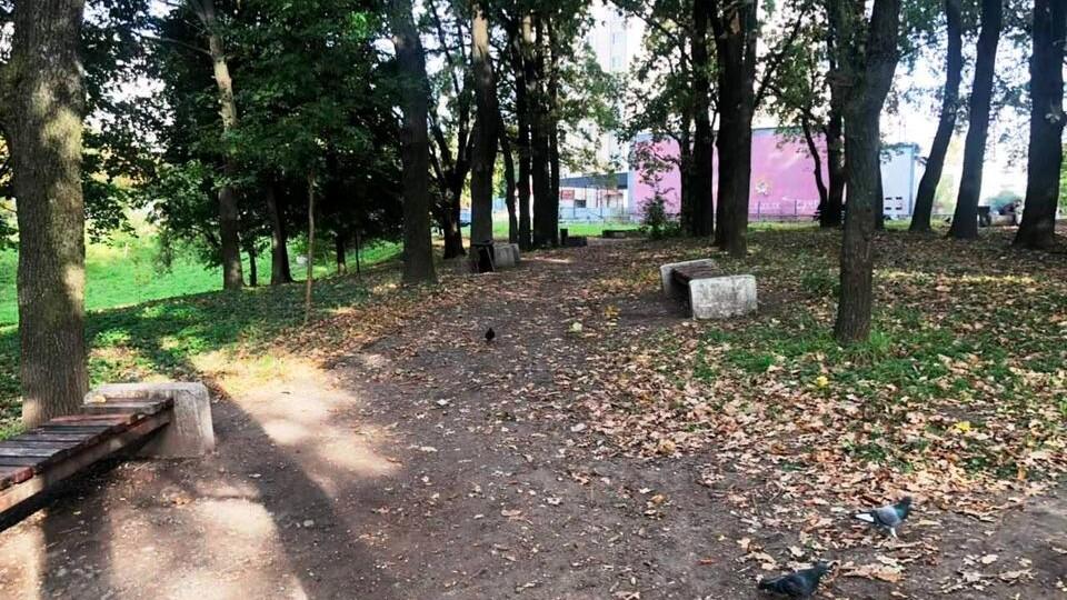 У Луцьку розпочали реконструкцію скверу «Дубовий гай»