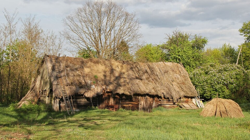 Забуті села,  ДОТи часів війни та старий цвинтар у лісі: мандрівник з Луцька подорожує Поліссям