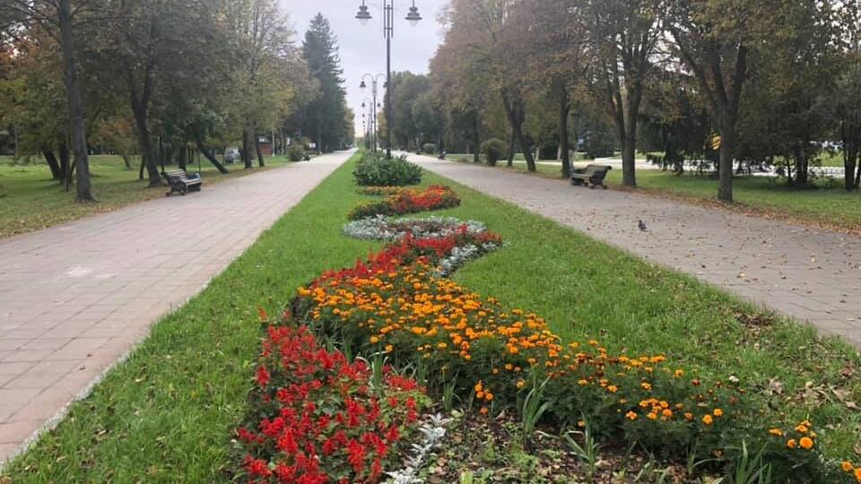У Центральному парку Луцька запустили безкоштовний Wi-Fi