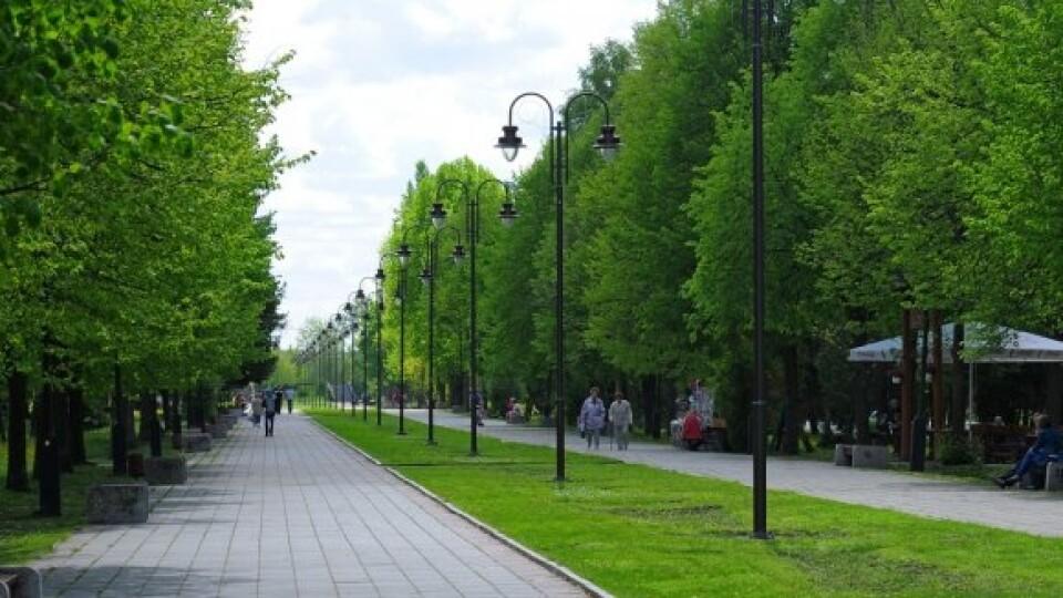 Луцьк – одне з міст із найменшою площею зелених насаджень