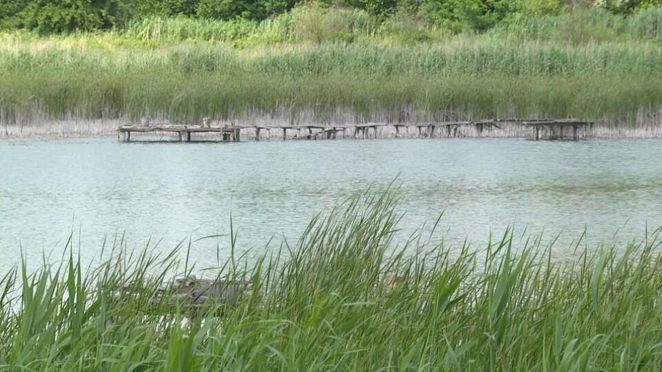 На Волині у ставку потонула 47-річна жінка