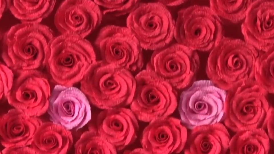 Лучан запрошують сфотографуватися на фоні 600 троянд. ВІДЕО