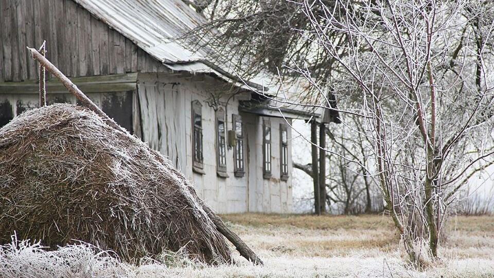 «Хоч декілька днів з інієм». Волинська зима на світлинах луцького мандрівника