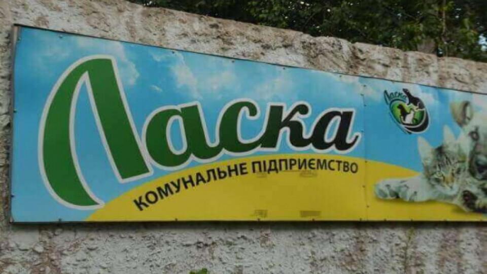 «Ласка» хоче відкрити готель для тварин у Луцьку