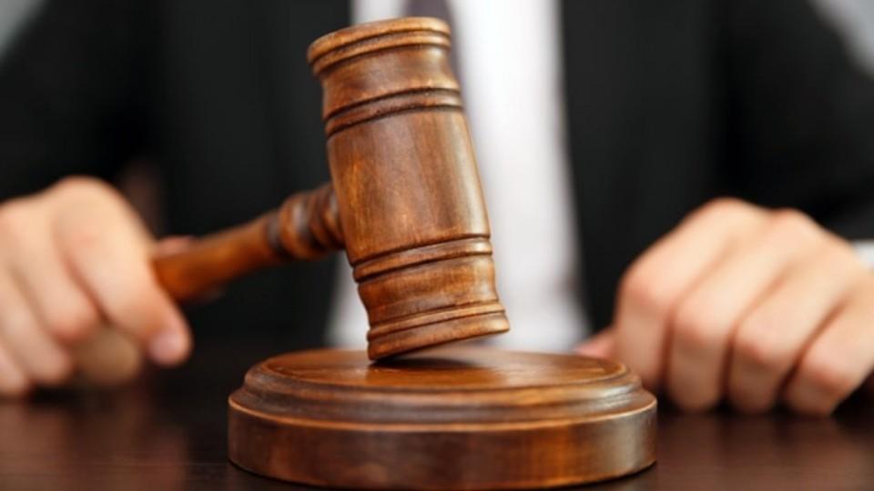 Судитимуть браконьєрів, які незаконно вбили на Любешівщині двох лосів