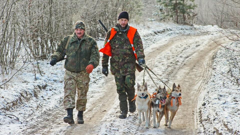 Чотири рушниці та капкан:  на Волині «полювали» на браконьєрів