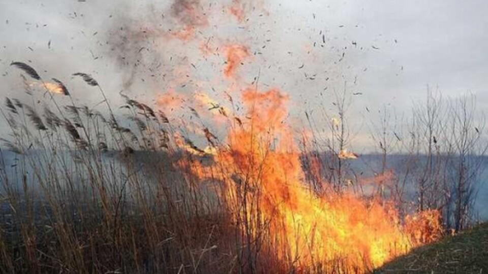 Щороку у волинському селі горять торф'яники. Луцька райрада шукає рішення