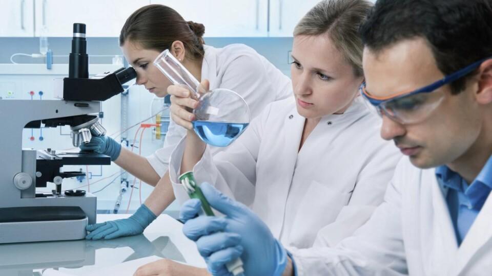 На Волині хочуть встановити стипендії обласної ради для молодих учених