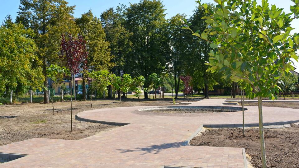 «Народив дитину - посади дерево». У Луцьку з'явився особливий сквер. ФОТО
