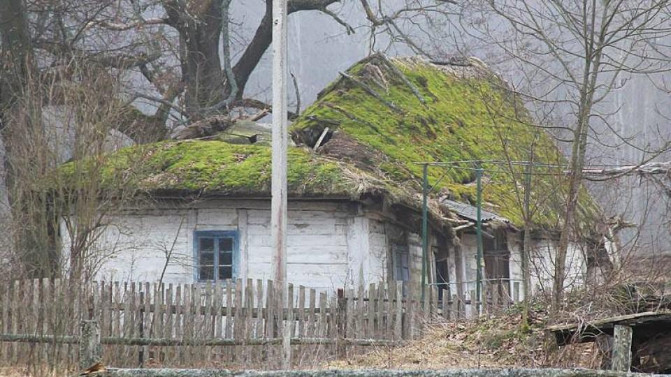 Неіснуюче село, дика природа та старий цвинтар:  історія подорожі волинським Поліссям. ФОТО