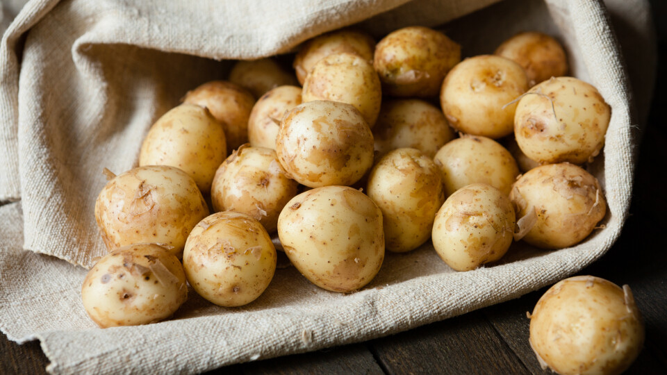 Скільки коштує молода картопля  на базарі в Луцьку