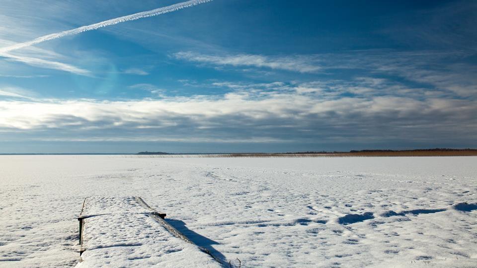Казкові світлини засніженого озера Світязь. ФОТО