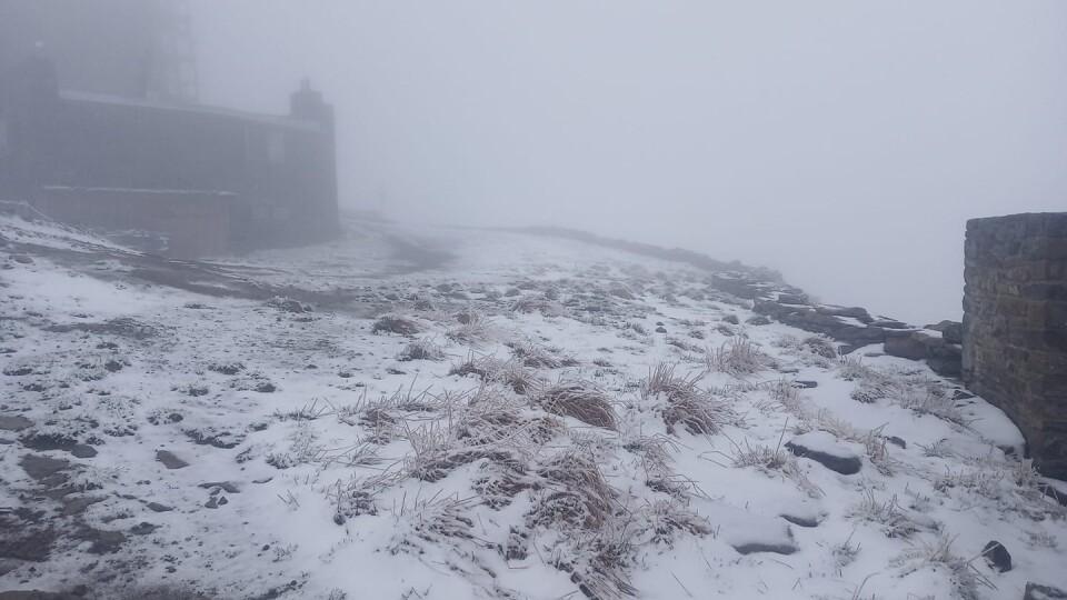 В останній день весни Карпати засипає снігом