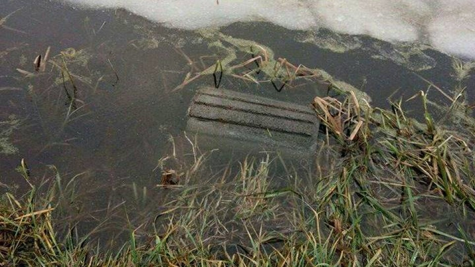У луцькому парку вандали поскидали смітники у канаву. ФОТО