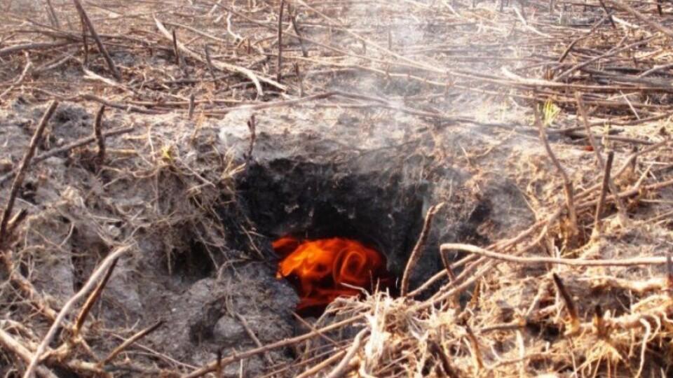 На Волині мешканці села Ржищів потерпають від торф'яних пожеж
