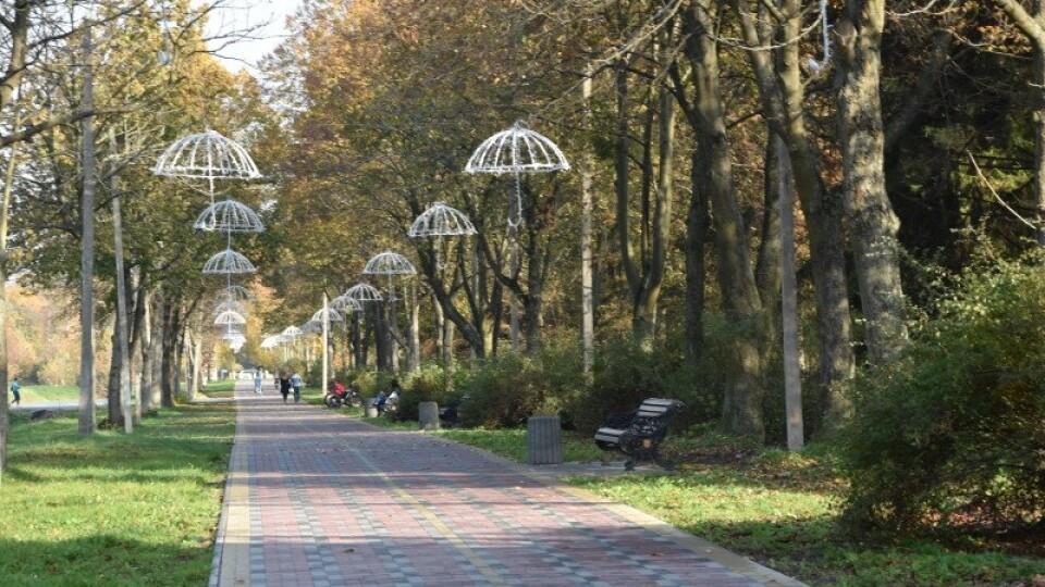 У Луцьку в Центральному парку встановлять 80 відеокамер