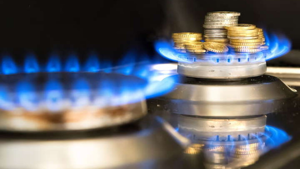 «Правильно розділити ці послуги, але щоб був один документ», – Гончарук про платіжки на газ