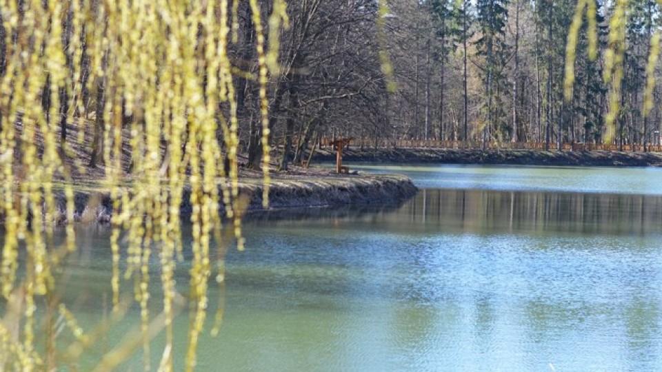 Без ґаджетів і на свіжому повітрі: у Воротнівському лісництві кличуть в гості школярів з міста. ФОТО