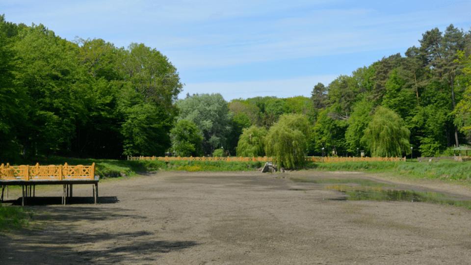 З кількох ставків з водою залишився один. Що наробила посуха у «волинській Швейцарії»
