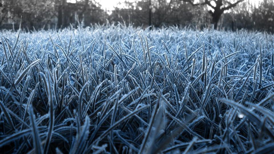 На завтра в Луцьку прогнозують перші заморозки