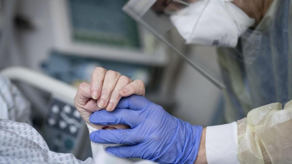 Коронавірус в Україні: за добу – понад 8 тисяч заражень і майже 20 тисяч одужань