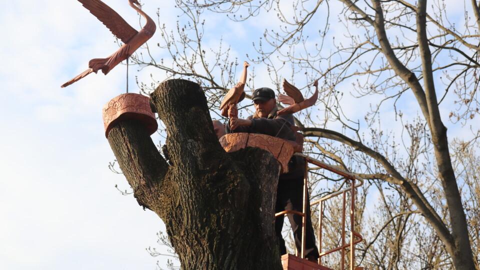 У Володимирі на зрізані дерева почепили скульптури