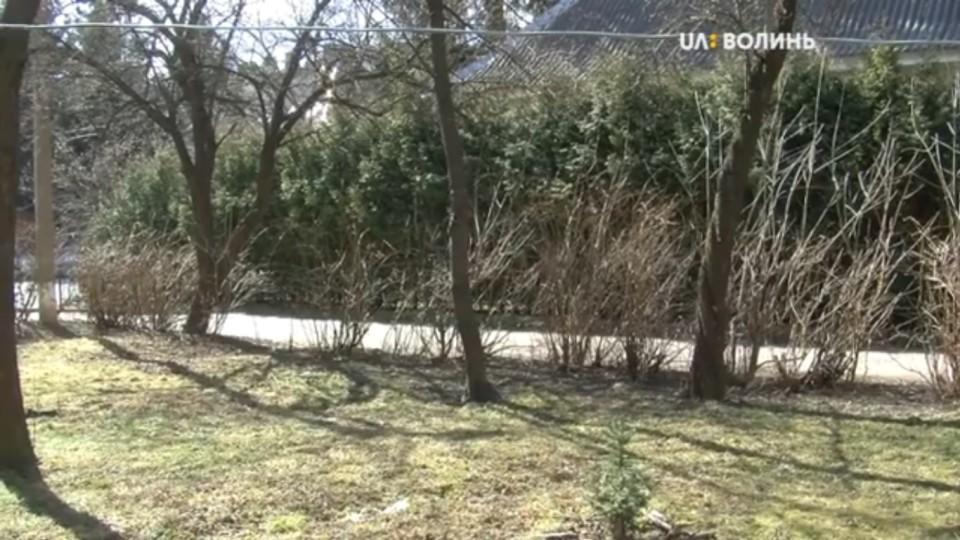У Луцьку мешканці «воюють» із комунальниками за зелену зону. ВІДЕО
