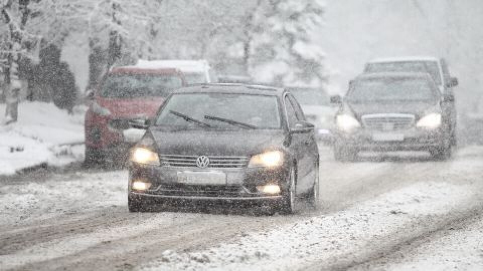 Снігопади, ожеледиця, а тоді – мороз. Як зміниться погода на Волині у найближчі дні