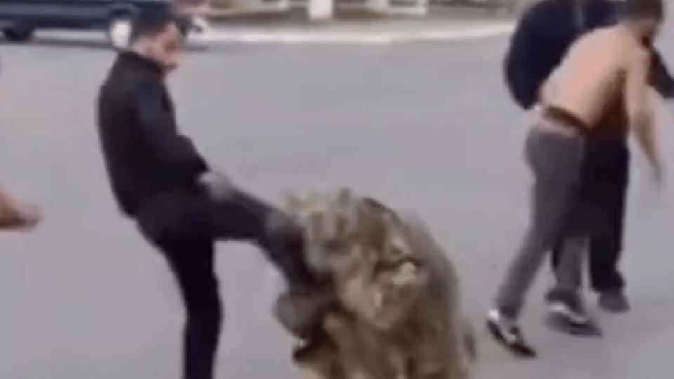 Чоловіки, які побили атовця у Торчині, попросили вибачення