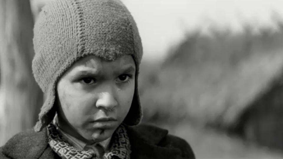 Фільм «Пофарбоване пташеня», який знімали на Волині, вийде в прокат 10 грудня