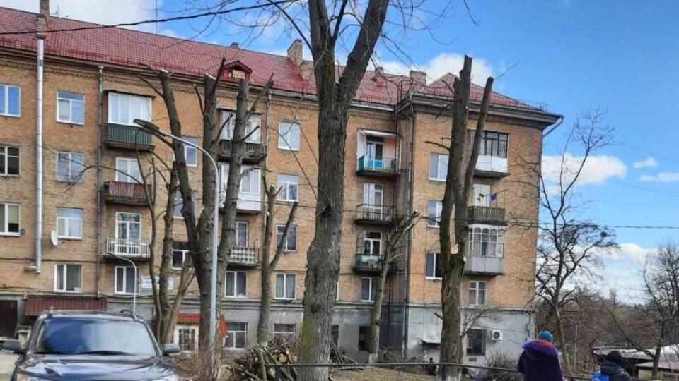 У Луцьку покарають ОСББ, які «кронують» дерева до стовбурів