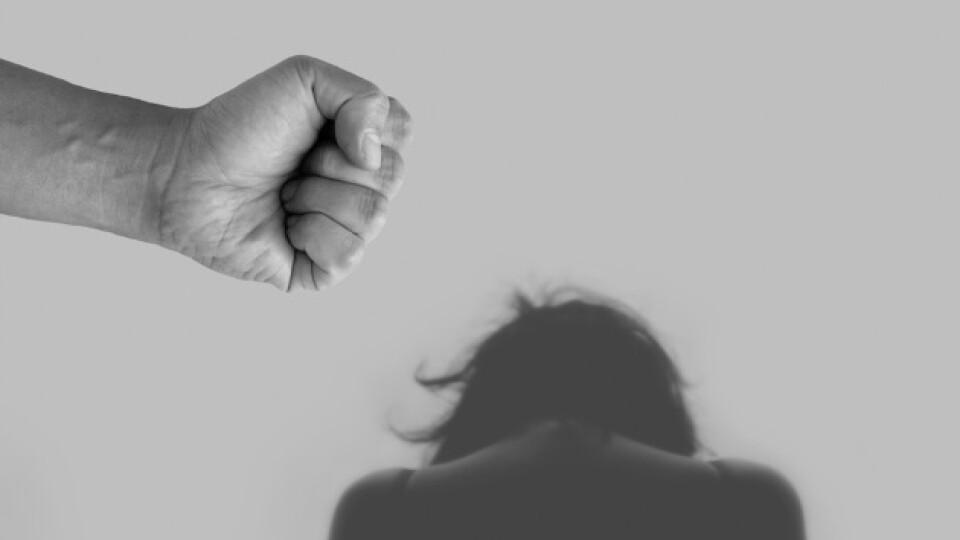 У Луцьку за рік карантину побільшало випадків домашнього насильства
